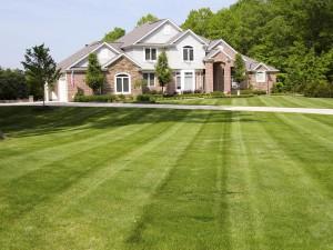 Summerbreeze_Landscaping_LawnMaint_002
