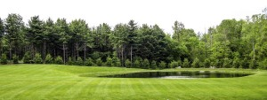 Summerbreeze_Landscaping_LawnMaint_003