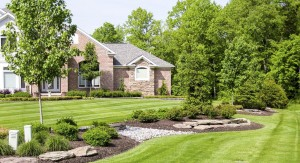 Summerbreeze_Landscaping_LawnMaint_004