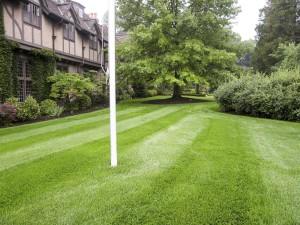 Summerbreeze_Landscaping_LawnMaint_006