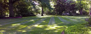 Summerbreeze_Landscaping_LawnMaint_012
