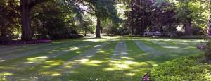 Summerbreeze_Landscaping_LawnMaint_012
